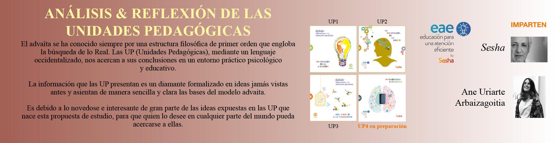 unidades-pedagogicas